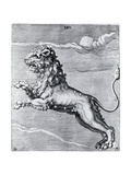 Engraving of the Lion; Constellation Giclee Print