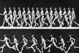 Sequential Frames of Nude Man Walking and Running Photographic Print by Eadweard Muybridge