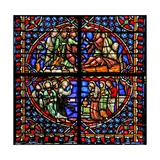 Window W4 Depicting Background Detail and Border Giclee Print