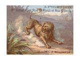 The Lion and the Gnat Giclee Print