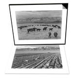Cattle in South Farm & Farm, Farm Workers, Mt. Williamson in Background Set Poster by Ansel Adams