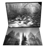 Canopy over Big Creek, Great Smoky Mtns Nat'l Park & Pine Forest Sunlight, Yosemite Nat'l Park Set Prints by Adam Jones