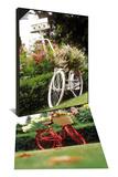 Vintage Bicycle I & Vintage Bicycle II Set Art by Philip Clayton-thompson
