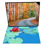 Autumn Trees Lining Country Road & Lily Pads and Flower Blossom Set Print by Cindy Kassab