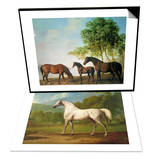 """Shafto Mares and a Foal & """"Mambrino"""", C.1790 Set Art by George Stubbs"""