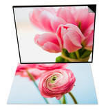 Pink tulips & Pink ranunculus Set Prints by Ada Summer