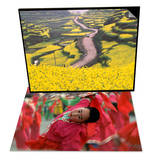 Mountain Path Covered by Canola Fields, China & Children Celebrating Chinese New Year, Beijing Set Prints by Keren Su