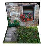 Flowers in Window In Tuscan Village, Italy & Outhouse Built in 1929 with Elderberries, Alaska Set Posters by Dennis Flaherty