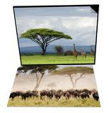 Maasai Giraffe & Topi, Serengeti Nat'l Park, Shinyanga, Tanzania Set Art by Ariadne Van Zandbergen