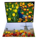 Peacock with Tulips, Keukenhof Gardens & Windmills and Tulips, Kinderdijk, Netherlands Set Prints by Keren Su