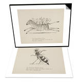 Monkeys Riding Zebra & Wasp Playing Flute Set Prints by Edward Lear