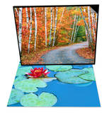 Autumn Trees Lining Country Road & Lily Pads and Flower Blossom Set Poster by Cindy Kassab