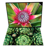 Young Pineapple Plant in Golf Dulce Area & Fresh Artichokes Set Prints by Douglas Steakley