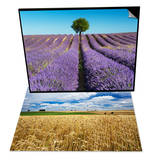 Lavender Field and Almond Tree in Provence & Wheat Field Under Cloud Filled Sky Set Prints by Frank Krahmer