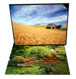 Wheat Field Surrounding Barn & Japanese Garden Pond Set Prints by Craig Tuttle