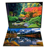 Fall Colors at Portland Japanese Gardens, Portland & Autumn Foliage Surrounding Picture Lake Set Posters by Craig Tuttle