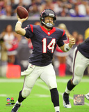 Ryan Fitzpatrick 2014 Action Photo