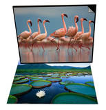 Pink Flamingos in Water & Royal Water-Lilies in the Pantanal Set Prints by Theo Allofs