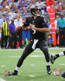 Joe Flacco 2014 Action Photo