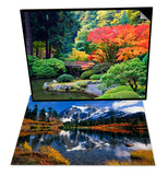 Fall Colors at Portland Japanese Gardens, Portland & Autumn Foliage Surrounding Picture Lake Set Print by Craig Tuttle