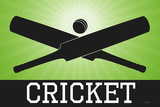 Cricket Green Sports Poster