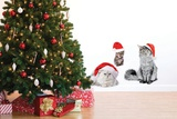Christmas Cats Wall Decal