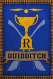 Quidditch Champions House Trophy Blue Kunstdrucke