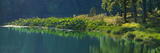 Pond with lotus, Indiana, USA Reprodukcja zdjęcia autor Anna Miller