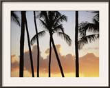 Salt Water Pond State Park, Kauai, Hawaii, USA, Pacific Framed Photographic Print by McCoy Aaron