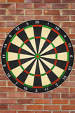 Dartboard Art Poster Print Photo
