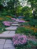 Indianapolis garden, Indianapolis, Indiana, USA Photographic Print by Anna Miller