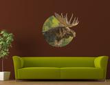Amerikaanse eland Muursticker