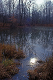 Autumn pond, Eagle Creek Park, Indianapolis, Indiana, USA Photographic Print by Anna Miller