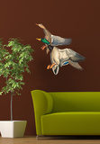 Flying Malard Ducks Wall Decal