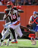 A.J. Green 2014 Action Photo