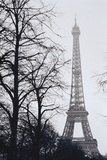 France, Paris. Eiffel Tower at Winter Photographic Print by Walter Bibikow