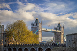 View of the Tower Bridge from the Tower of London, London England, Uk Photographic Print by Brian Jannsen