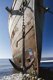 Chile, Punta Arenas, Shipwreck of Lonsdale Port Area Reprodukcja zdjęcia autor Walter Bibikow