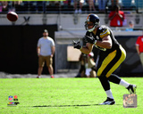 Heath Miller 2014 Action Photo