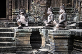 Cambodia, Angkor Wat. Banteay Srei Temple, Three Monkey Statues Photographic Print by Matt Freedman