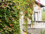 Europe, Italy, Tuscany. Ivy Covered House in the Town of Impruneta Photographic Print by Julie Eggers