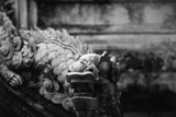Vietnam, Hue, Royal Library Dragon Gargoyle, Close-Up Photographic Print by Walter Bibikow