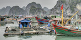 Vietnam, Cat Ba Island, Ha Long Bay. Boats and Floating Houses Photographic Print by Matt Freedman