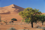 Namibia, Sesriem and Sossusvlei, Sand Dunes Desert at Namib NP Photographic Print by Gavriel Jecan