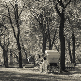 USA, New York, New York City, Central Park, Horse-Drawn Carriage Photographic Print by Walter Bibikow