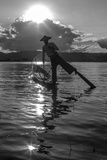 Intha Fisherman at Work Using His Legs to Row. Inle Lake. Myanmar Photographic Print by Tom Norring