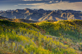 Mountain Landscape in Fall Color, East Canyon, Utah Photographic Print by Howie Garber