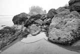 Low Tide, Pacific Ocean, Northern California, Trinidad Photographic Print by Rob Sheppard