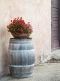 Europe, Italy, Tuscany. Flower Pot on Old Wine Barrel at Winery Lámina fotográfica por Julie Eggers