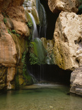 Waterfall in Elves Chasm, Colorado River, Grand Canyon NP, Arizona Photographic Print by Greg Probst